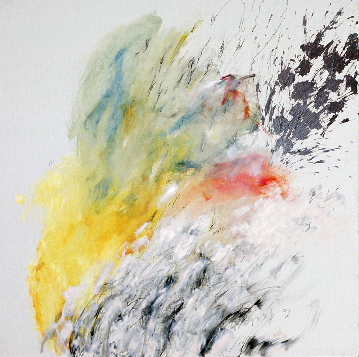無題 | 森田加奈子 Kanako MORITA
